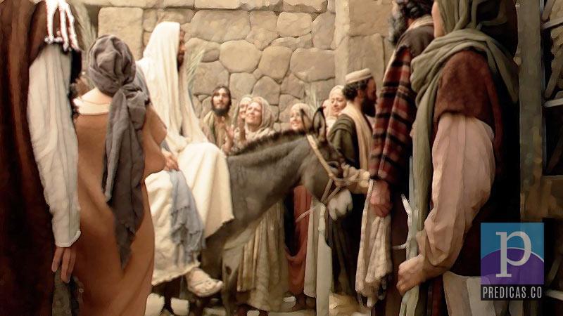 Jesus entra a Jerusalen en el Domingo de ramos previo a la Pascua